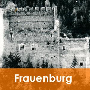 Burgenseite Wohnturm der Frauenburg