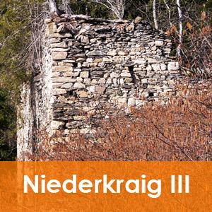 Burgenseite Kasten Niederkraig