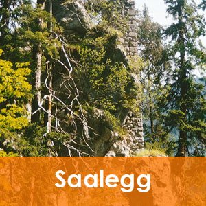 Burgenseite Ruine Saalegg in Salzburg