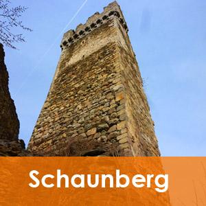 Burgenseite Bergfried Schaunberg