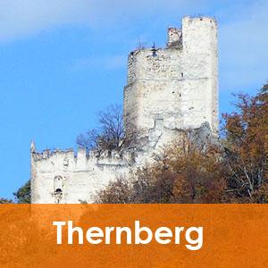 Burgenseite Baubeschreibung Burg Thernberg
