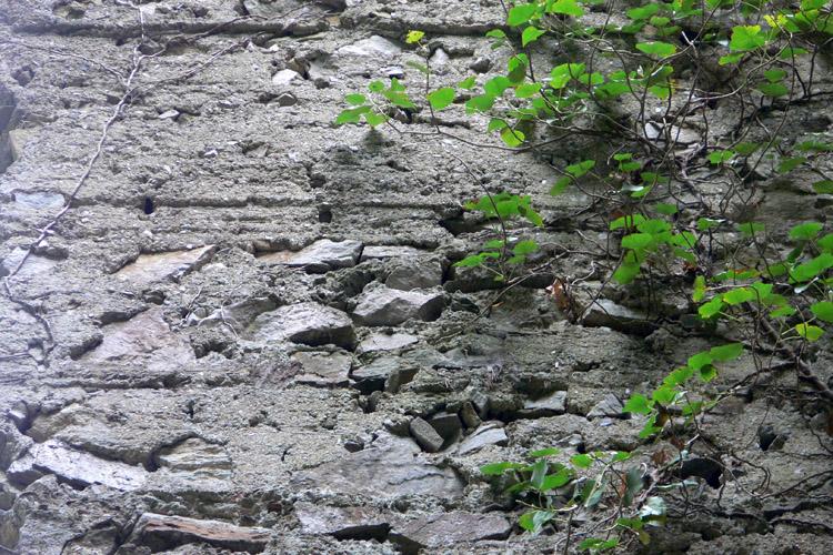 Neu-Wachsenegg: Abdrücke der Bohlenstube