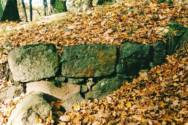Alt-Gleichenbeg: spärliche Reste der Ringmauer. Foto 1998.