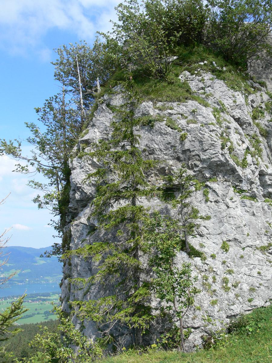 Wartenfels: Felsen der Hochburg vom Westen aus gesehen.