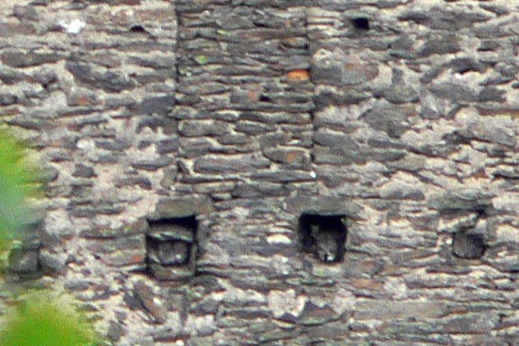Niederkraig Wohnturm. Detail des beweglichen Balkens am Balkon 3. Obergeschoss Westseite.
