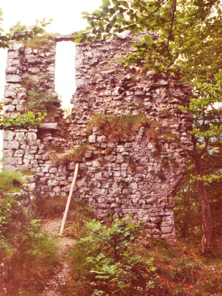 Gutrat: Rückseite des Wohnturms, Zustand 1996