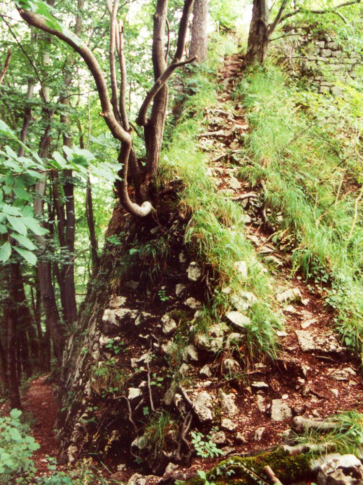 Gutrat: Burgweg nach der ersten Kehre, rechts der Pfad zur Hochburg, der heute auf einer Stahltreppe geführt wird (Foto 1997)