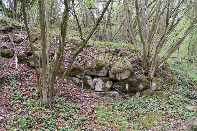 Mitterberg: Ringmauerrest in der ersten Vorburg