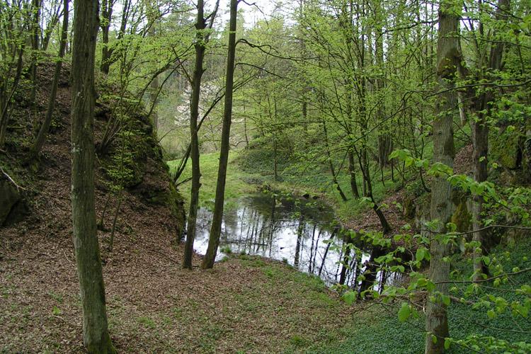 Mitterberg: Halsgraben zwischen Hauptburg  und erster Vorburg