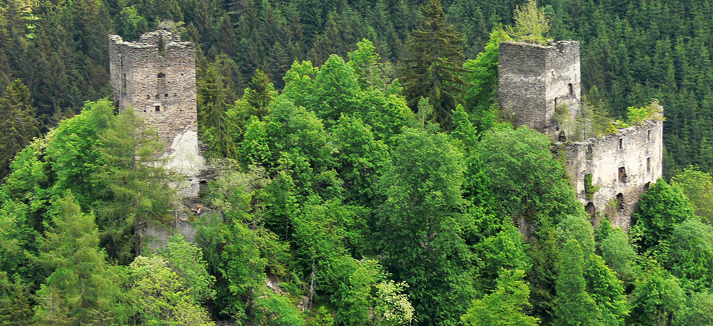 Überblick über Niederkraig mit der Hauptburg rechts und dem Wohnturm links.