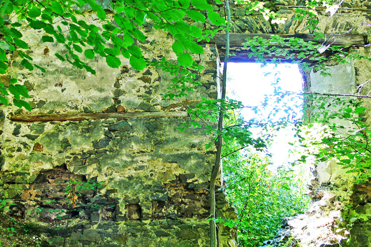 Pernegg: Rechteckfenster mit Befestigung für Wandtäfelung im Wohntrakt