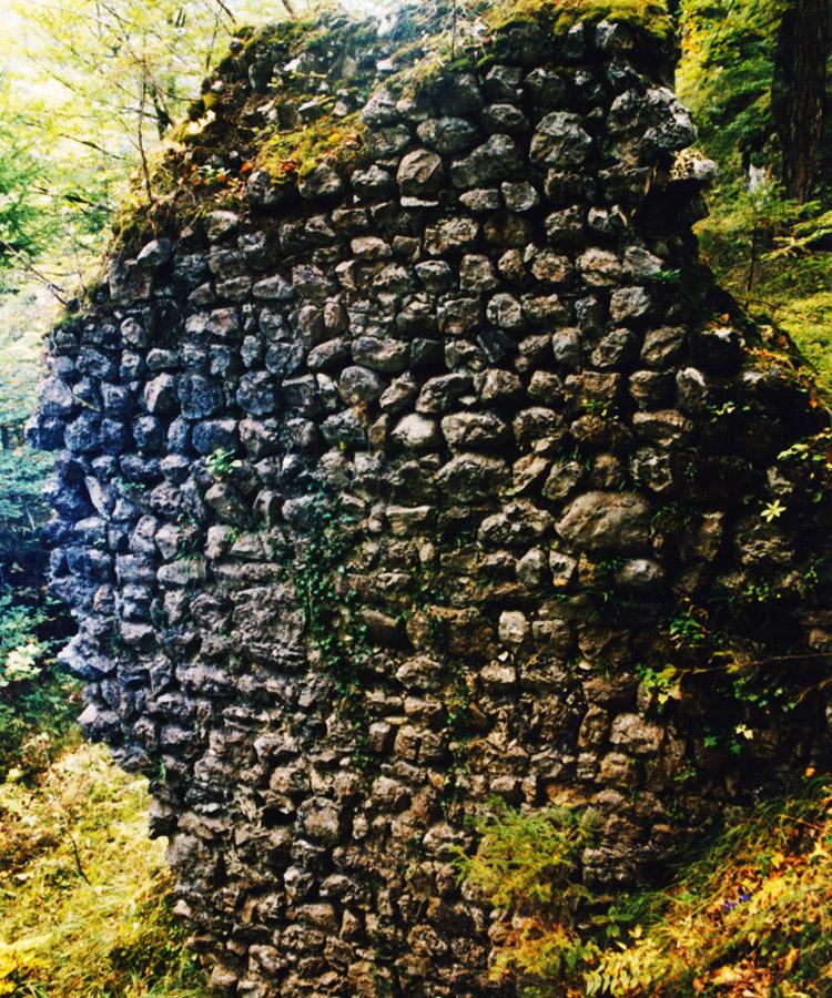 Schintelburg: Mauerwerk der Ringmauer