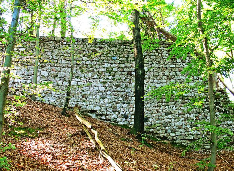 Federaun: nördliche Ringmauer der Kernburg