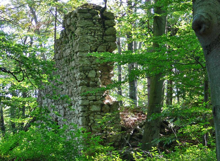 Federaun: Rückseite des Schalenturms