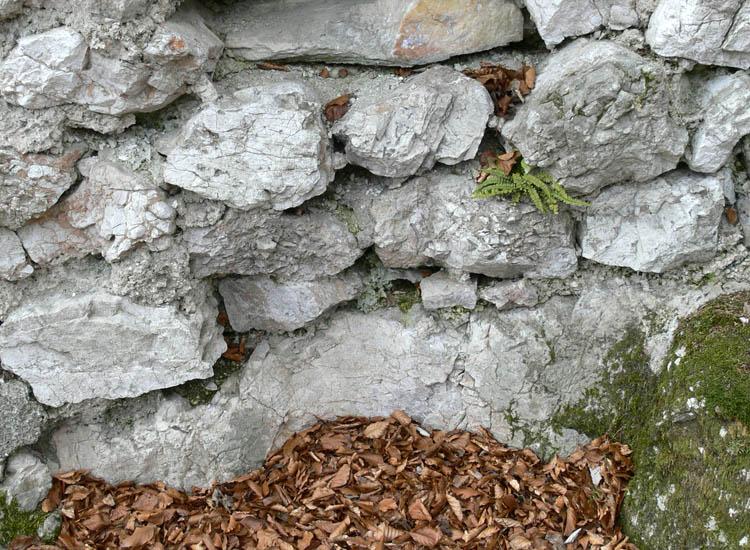 Federaun: Gelenk für einen Torflügel, an der Ostseite der Kernburg