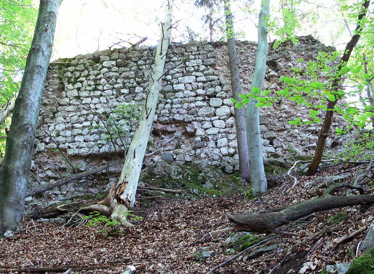 Federaun: Westsseite der Kernburg