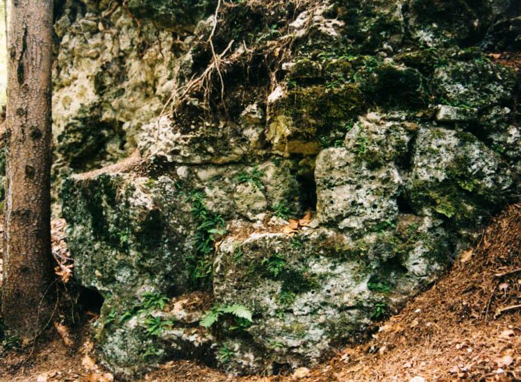 Greifenfels: Mauerwerk