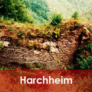 Burgruine Harchheim