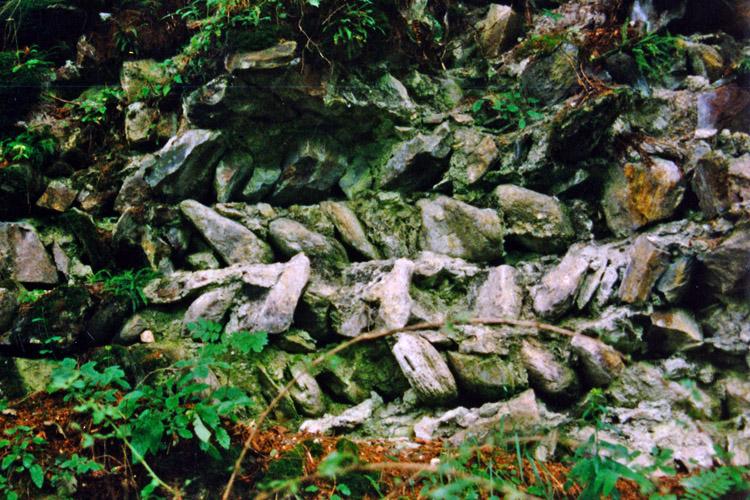 Kienburg: Als opus spicatum in Schichten gemauertes Füllmauerwerk