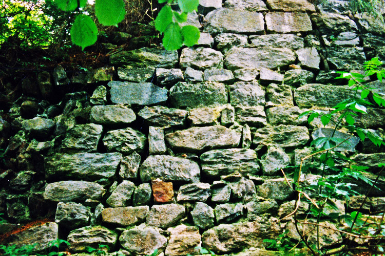 Kienburg: Reste der östlichen Ringmauer (Foto 1999)