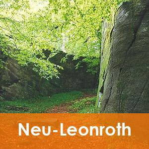 Neu-Leonroth