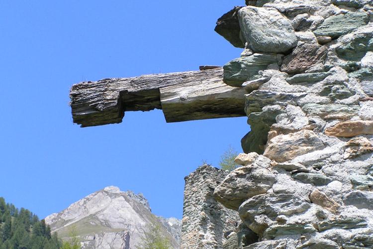 Rabenstein-Virgen: Maueranker am Turm der Vorburg