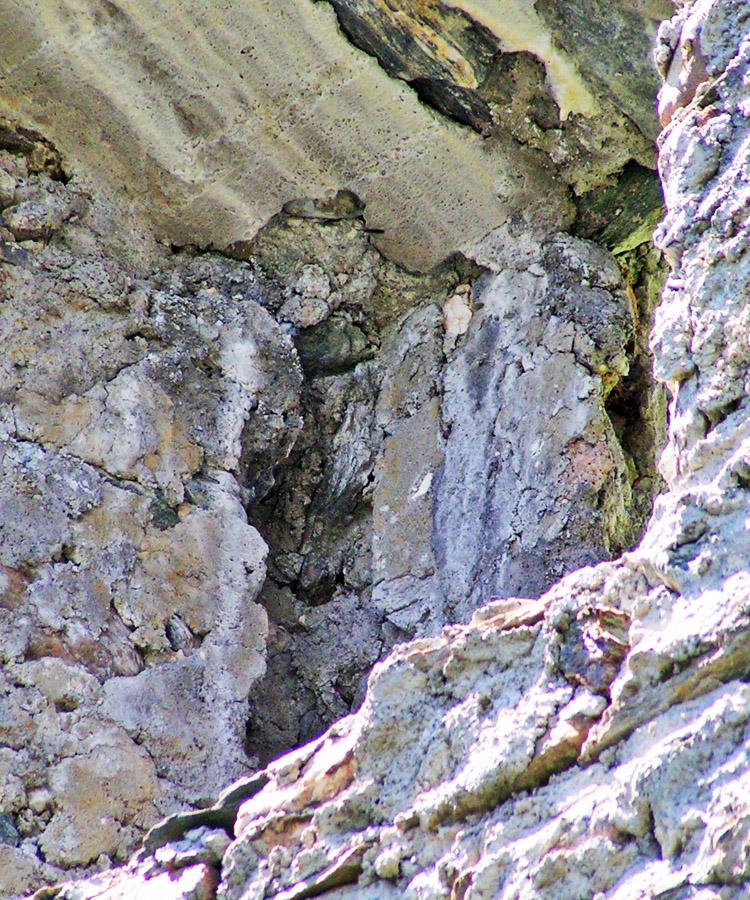 Rabenstein-Virgen: Osttrakt, Schiebeladenfenster, Wandnische zur Aufnahme des Schiebeladens