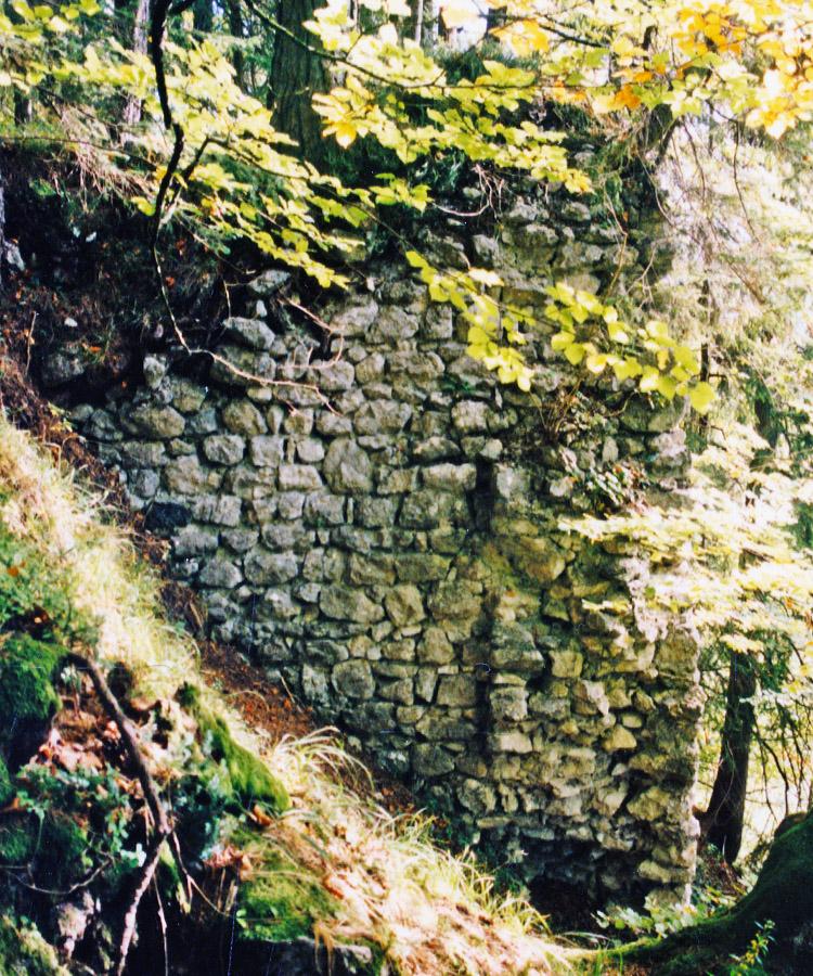 Schintelburg: Mauerwerk