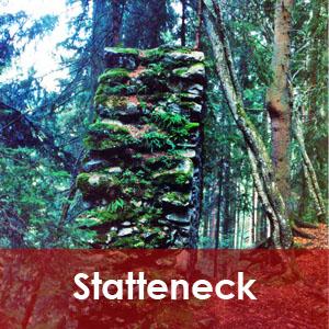 Statteneck