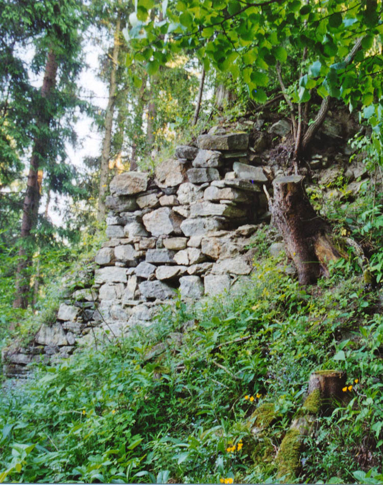 Thurnberg: die kümmrlichen überwucherten Reste des Bergfrieds