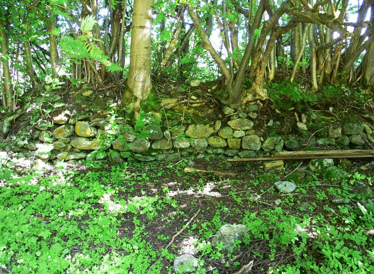 Wagrain: Zustand der RIngmauer 2005
