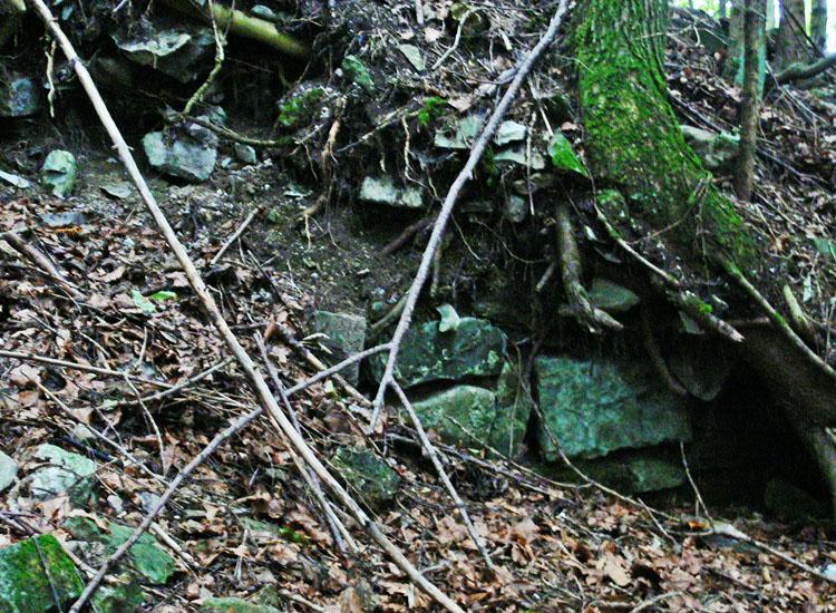 Wildenegg: wenige überwucherte Reste des Mauerwerks der Ringmauer