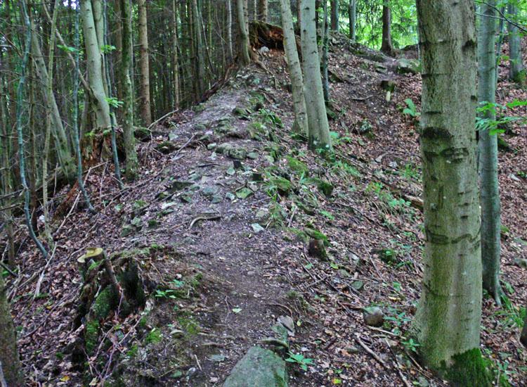 Wildenegg: unter diesem Schutthügel liegt die südlich Ringmauer