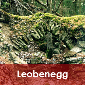 Leobenegg