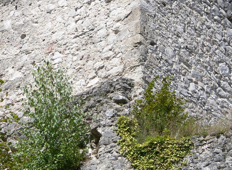 Finkenstein: der Bergfried überbaut eine ältere Ringmauer